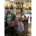 Διακόσμηση Κολυμπήθρας 'Ροζ Σομον Τριαντάφυλλα'